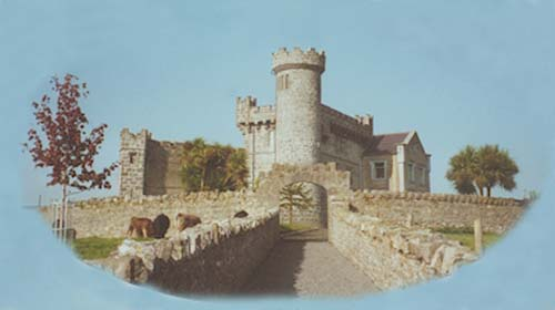 Carrigeen Castle Tipperary main