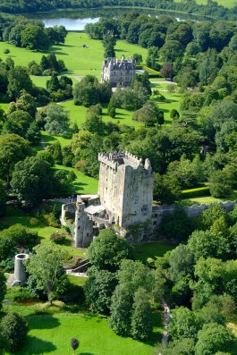 Cork Blarney Castle main
