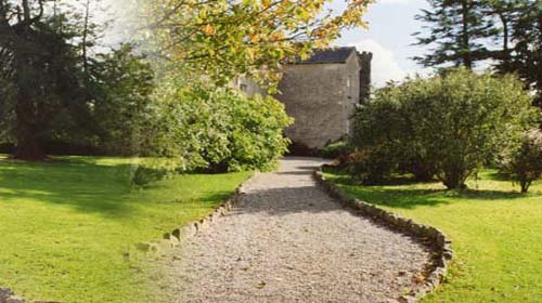 Killaghy Castle Tipperary garden